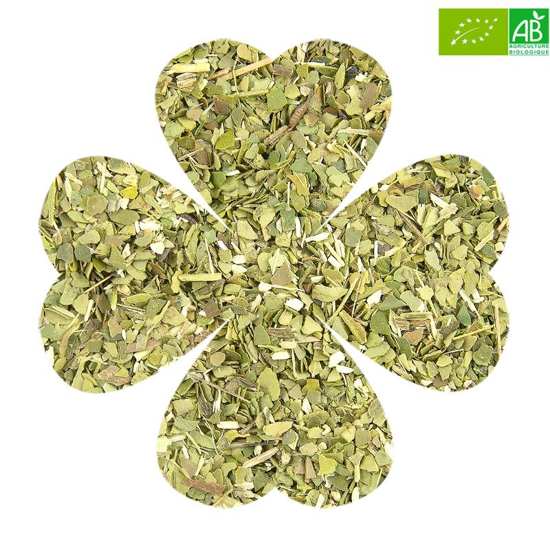 Luckytea herbes bio mate 2
