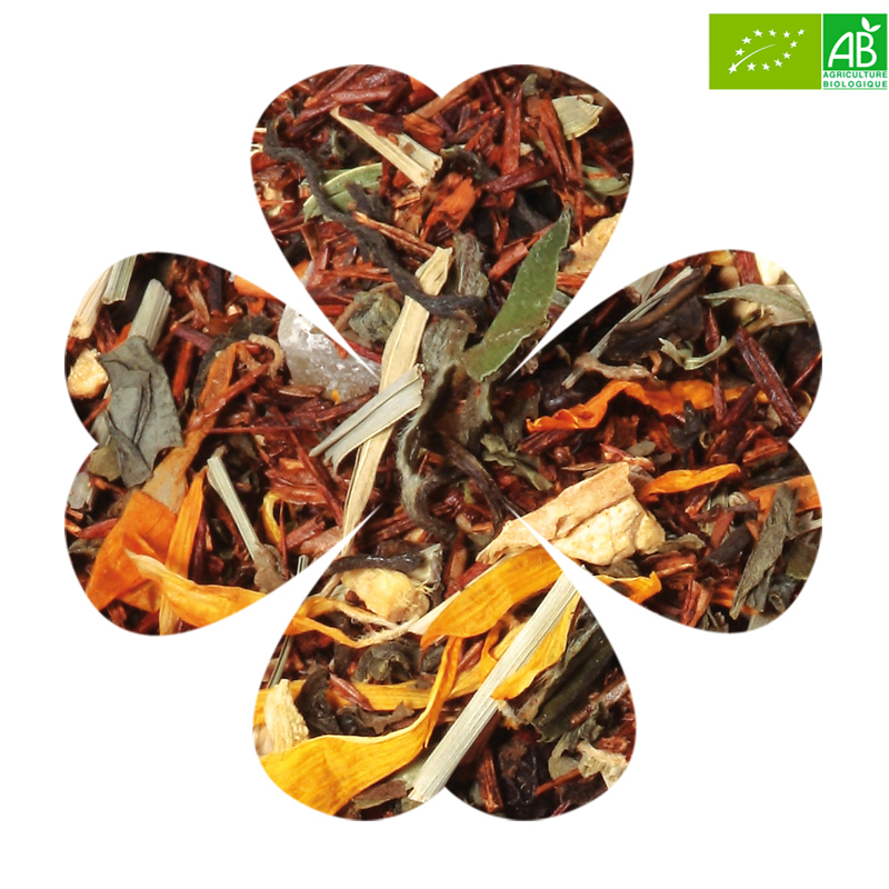 Luckytea infusion the bien etre bio amour fruite 1