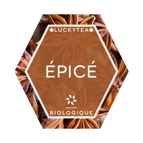Luckytea the infusion biologique aux epices 1