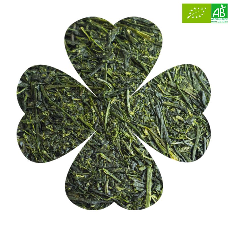 Luckytea the vert bio sencha uchiyama 2
